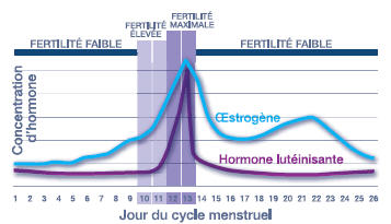 Test d'ovulation ClearBlue Digital 2 hormones