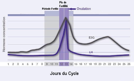 Graphique ovulation pic de LH